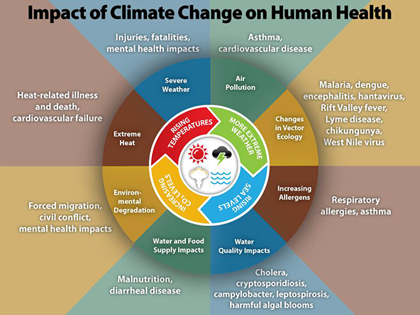 climate_change_health_impacts600w.jpg